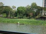 Chao-Phraya